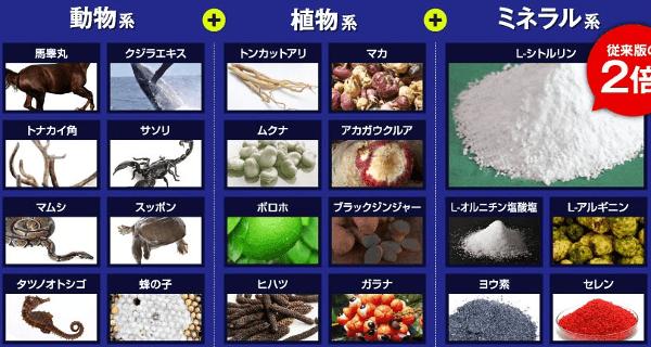 ヴィトックスα成分含有量